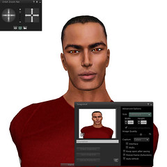 Second Life Viewer 2.1