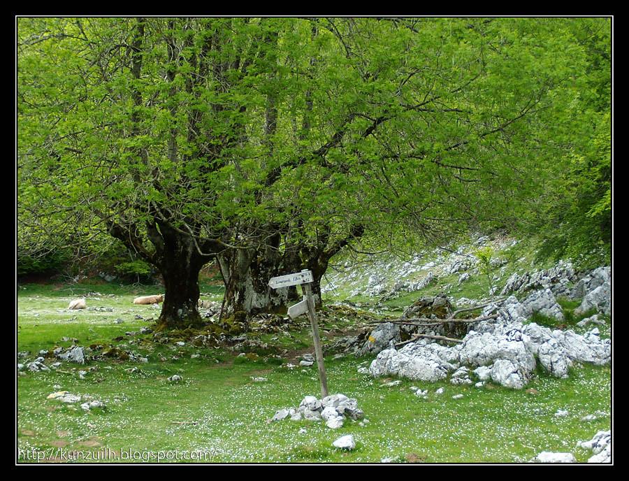 Aizgorri_164008