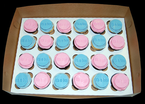 Baby shower cupcakes for twins - its a girl AND its a boy