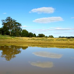 Double Take | Wistow (Daniel Tindale) Tags: blue winter lake abstract reflection tree green water yellow wall clouds rural gum square landscape mirror countryside pond afternoon pentax dam farm daniel south country farming rustic australian bank australia farmland double hills ranges take adelaide sa pastoral gumtree midday southaustralia cloudscape bugle wistow adelaidehills tindale k20d bugleranges danieltindale