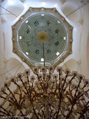 Syria / سقف الجامع الأموي