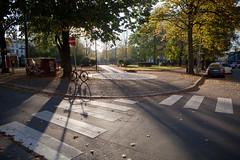 21 October, 09.58 (Ti.mo) Tags: park autumn sun oslo norway iso100 grnerlkka olafryesplass  0ev ef24mmf14liiusm secatf28