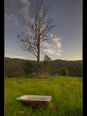365 project - 30 10 10 (Crouchy69) Tags: blue mountains tree field grass project landscape dead bath australia valley tub bathtub 365 paddock megalong 365project