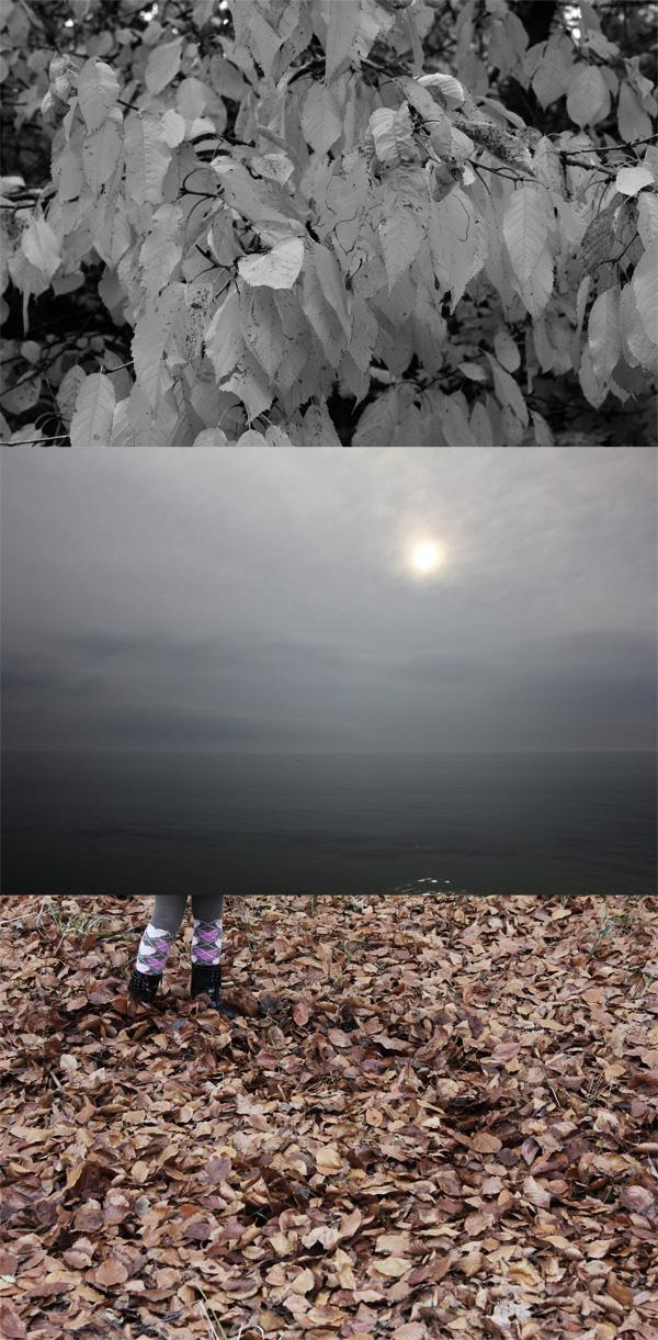 Stranden-i-Bjärred