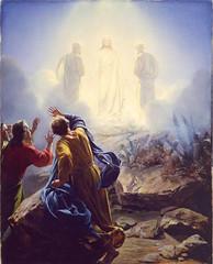 Jesus Christ Mormon (More Good Foundation) Tags: christ jesus mormon