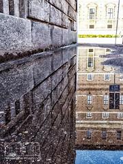 PIACENZA - riflesso farnesiano (massimo mazzoni 78) Tags: piacenza italia arte art palazzofarnese pozzanghera puddle cielo sky