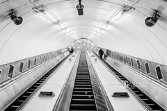 Waterloo Tube Station (II), London, UK (davidgutierrez.co.uk) Tags: london architecture art city blackandwhite davidgutierrezphotography nikond810 nikon interior londonunderground urban travel blackwhite photography people londonphotographer property uk photographer monochrome stairs bw black white blackandwhitephotography arts abstract tube unitedkingdom 伦敦 londyn ロンドン 런던 лондон londres londra england europe beautiful cityscape davidgutierrez capital structure britain greatbritain centrallondon d810 escalator buildings lights transport light design tubestation symmetry building station londonboroughoflambeth lambeth waterloo interiors indoor contemporary edgy highkey nikon2485mmf3545gedvrafsnikkor nikon2485mm