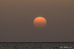 Ocean view (TylerSchlittPhotography) Tags: photography sunset alabama alwx sun flickr canon80d water orange gulf mexico gulfofmexico
