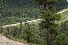 10 - Elk River Bridge Hwy 93 (DocMcCoy) Tags: bordercrossing highway britishcolumbia bc roosville highway93 bridge landscape