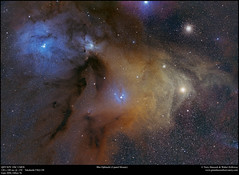 Rho Ophiuchi 4 panel mosaic (Terry Hancock www.downunderobservatory.com) Tags: sky qhy qhy367 optolong astrophotography astroimaging space cosmos