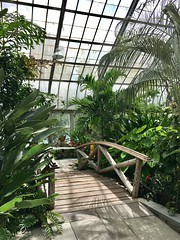 Brookside Gardens Conservatory (karma (Karen)) Tags: wheaton maryland montgomeryco brooksidegardens conservatory plants bridges fences shadows iphone topf25