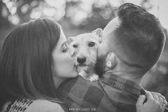 Amor incondicional (Noelia Uroz) Tags: love couple dog pet animal kisses blackandwhite bw blancoynegro pareja amor perro mascota