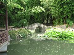Chinese Scholar's Garden 7