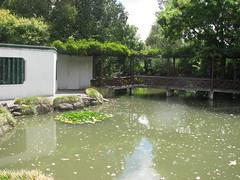 Chinese Scholar's Garden 4