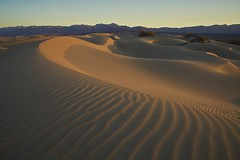 First Light - Mesquite Flat Sand Dunes, Death Valley National Park, California (D Breezy - davidthompsonphotography.com) Tags: california morning travel sun sunrise canon nationalpark sand waves desert dunes curves textures deathvalley ripples sanddune sanddunes mojavedesert firstlight mesquitesanddunes stovepipewells deathvalleynationalpark 1740f4l dvnp 1740mml mesquiteflat mesquiteflatsanddunes 5dmarkii artofimages canon5dmarkii bestcapturesaoi untoucheddunes