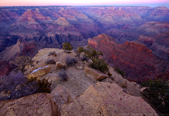 One cannot describe Mount Rainier, one cannot describe the Grand Canyon, one cannot describe the beloved Yosemite; humanity is silent in their presence (dwinning) Tags: pink blue sunset red arizona orange cliff usa color tourism america golden bush december desert angle pastel grandcanyon wide gap grand tourist canyon dec american hour gorge shrub 2009 1022 chasm