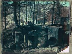 fire-damage (Flying Barnacles) Tags: fire damage expiredfilm 4x5polaroid polaroid59