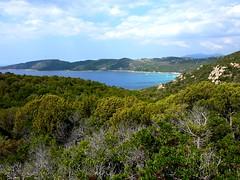 Capu di Muru et Cala d'Orzu depuis la tour de Capu Neru