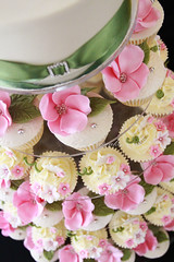 Summer Lovin! (Bella Cupcakes (Vanessa Iti)) Tags: birthday pink flowers wedding white silver ivory pandas mossgreen buttercream cupcaketower waitakereestate bellacupcakes