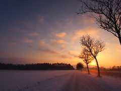 snow track (Jos Mecklenfeld) Tags: road sunset mist snow fog germany landscape deutschland sneeuw erika ricoh duitsland weg landschap emsland haren niedersachsen gx200 rtenbrock