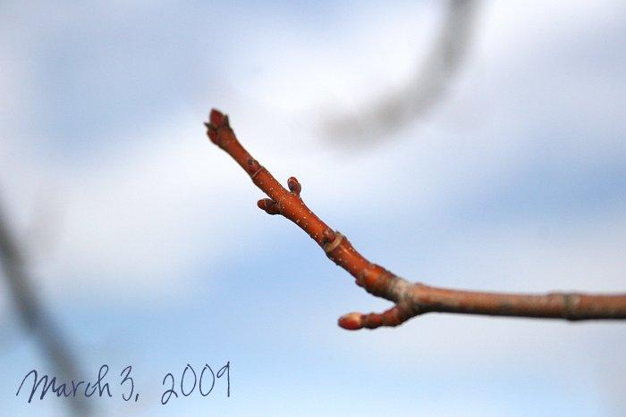 01-07-spring2
