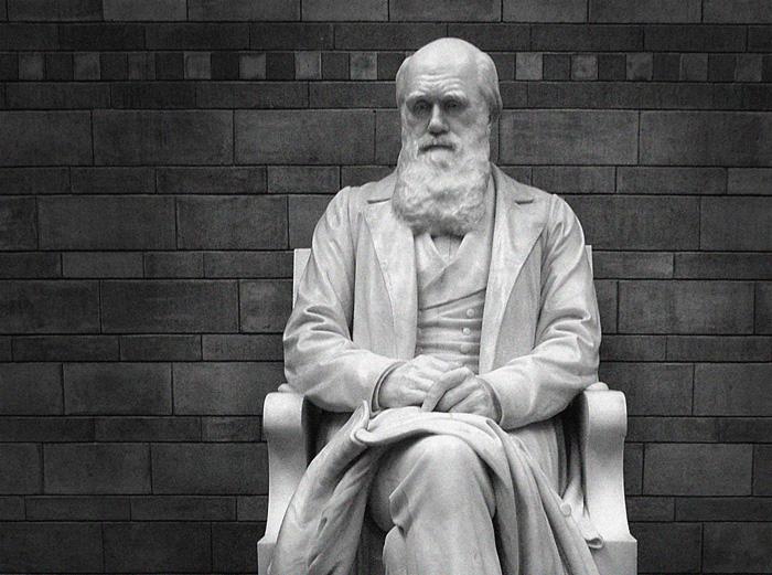 Mr. Darwin