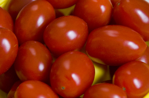 11/365 Tomatoes
