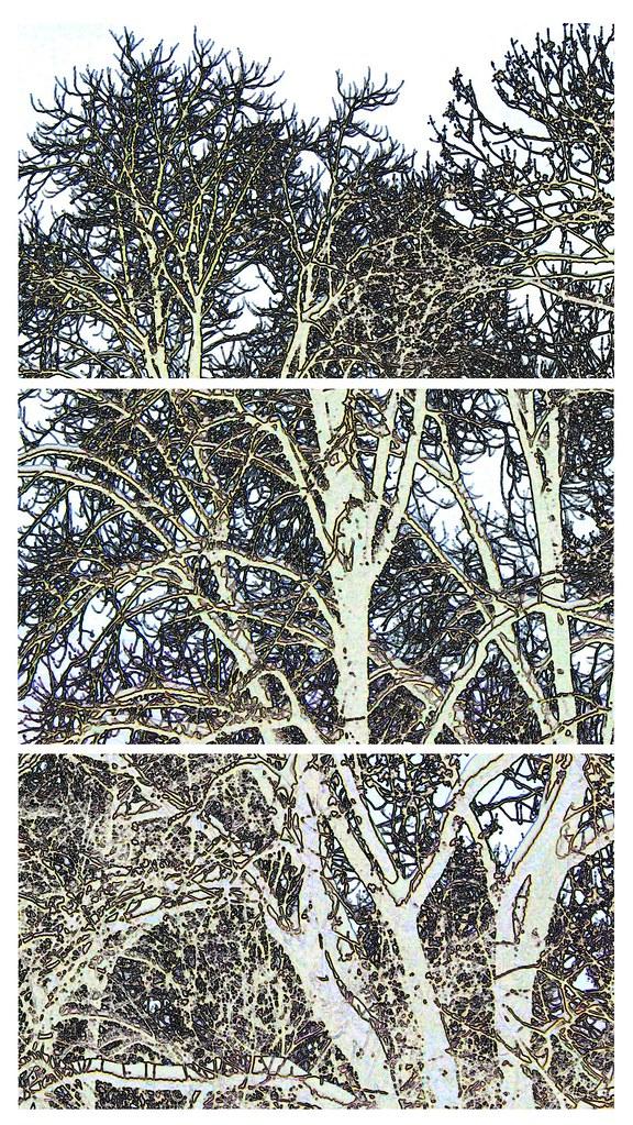 2010 janvier 13 - neige 011 - composition contours lumineux négatif