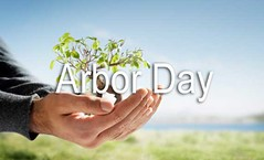 arbor-day-banner