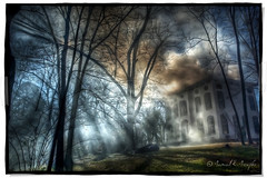Billowing Smoke Ascends (Proleshi) Tags: trees windows sky house hot home grass pine forest fire bush nikon raw branches smoke lawn burning burn heat rays firemen firedepartment hdr consume billow onfire subdued ringgold restrained d60 raysofsunshine singleraw proleshi