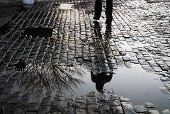 Do Not Leave Me Alone ! (MOHSEN MaSoUmI) Tags: man reflection tree water girl walking mohsen masoomi masoumi mohsenmasoumi