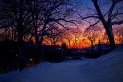 Sunset from St. Hanshaugen (Joaaso) Tags: road park city winter sunset snow oslo norway by forest evening norge vinter europe cityscape catchycolours skog bluehour geography sti centrum lightpole winterwonderland sn northeurope solnedgang lightroom kveld sthanshaugen bltime lyktestolpe canonefs1755mmf28isusm oslosentrum canoneos450d adobelightroom3beta
