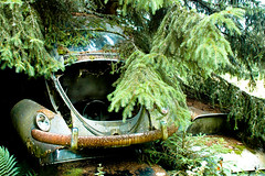 old history cars ford abandoned car vw rural bug... (Photo: Peter Bromley on Flickr)