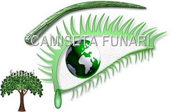 desenho foto natureza arvore olho globo ecologia
