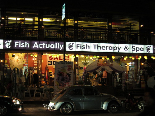 Fish Actually