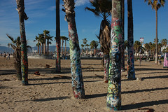 Graffiti'd trees (loudguitars) Tags: venice beach graffiti palmtrees graffitizone marvinbraudebiketrail