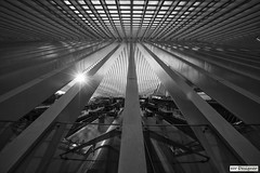 Lige-Guillemins Station (rbpdesigner) Tags: bw slr station train sunrise canon blackwhite europa europe belgium belgique gare noiretblanc belgi pb bn trainstation calatrava 5d trem liege stazione pretoebranco negre estacin luik tgv santiagocalatrava lige estao belgien belgio 30d blgica thalys lieja lttich  highspeedtrain highspeedrail  llens canoneos5d lige trembala  canoneos30d traingrandevitesse koninkrijkbelgi royaumedebelgi