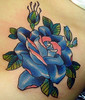 bluerose2