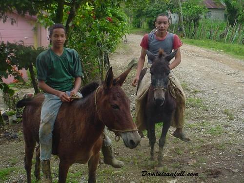 la vida en el campo dominicano