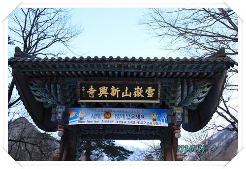 韓國之旅 565
