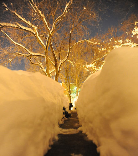 """the 30"""" of winter 2010"""