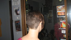 IMG_0867 (raiH enaS) Tags: haircut hair brittany shaved smoking short shorthair buzzednape