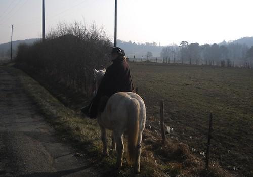 Ballade pour Equine Rescue 4353442325_4204704879