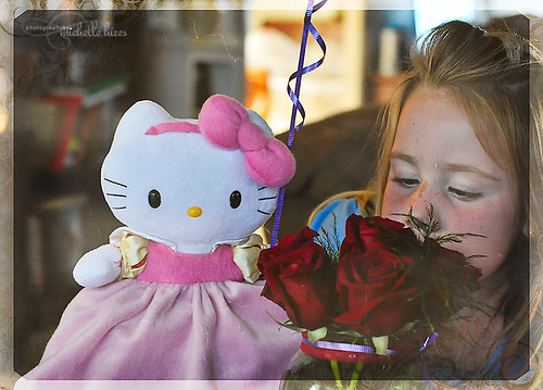 Hello Kitty - 45/365 Photo