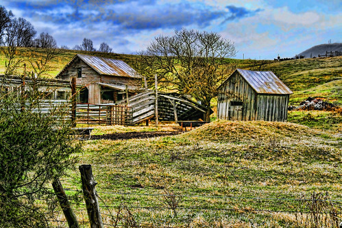 Old Cattle Farm