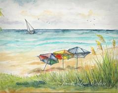 Deerfield Beach Umbrellas (janisleecolon) Tags: fl deerfieldbeach umbrellas
