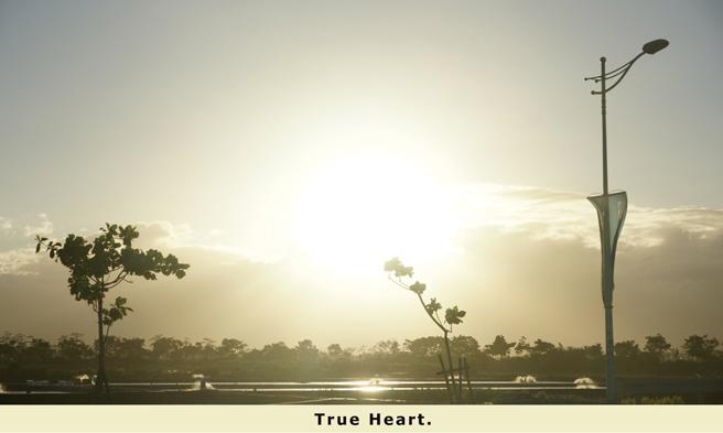 0_postcard_03_True Heart.