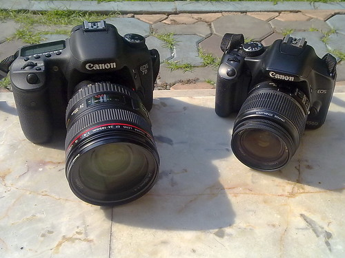 Canon 450D and Canon 7D side by side