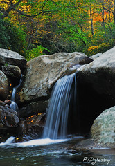 My Cup Runneth Over (P. Oglesby) Tags: autumn mountains tennessee boulders waterfalls rivers thehighlander godlovesyou greatsmokymountiansnp wpronglittlepigeonriver