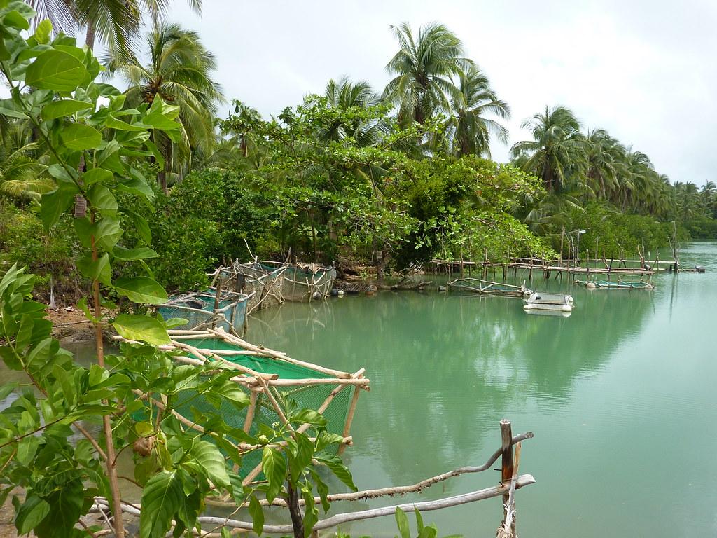 Samar-Guiuan (145)